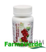 Wolfberry Extract de Fructe Goji 60 capsule BBM Medical