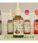 AEROSOLI 100% natural cu propolis copii Aburii Naturii Prisaca Transilvania