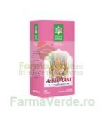 Antioxiplant 60 capsule Steaua Divina Santo Raphael