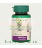 Armurariu Protectie Hepatica 60 Comprimate DaciaPlant