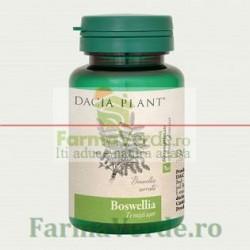 Boswellia 60 Cpr DaciaPlant