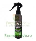 DR SANTE Spray regenerant pentru par fragil cu ulei de macadamia si cheratina DRS88 Cosmetica Verde