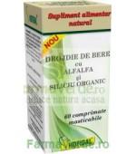 Drojdie de bere cu AlfAlfa si Siliciu Organic 60 comprimate masticabile Hofigal