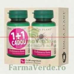 Echinacea Forte 60 Comprimate DaciaPlant PROMO! 1+1 GRATIS