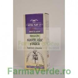 Extract din Paducel, Vasc si Urzica Tinctura 500 ml Natura Plant IF