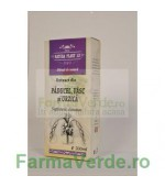 Extract Renalplant Tinctura 500 ml Natura Plant IF
