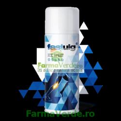 GEL FASTULG Ice Spray 400 ml Alice&Cristi Farm