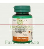 Ganoderma 60 Comprimate DaciaPlant