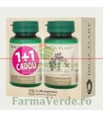 Gastrocalm 60 Comprimate 1+1 GRATIS! DaciaPlant PROMOTIE!