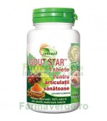 Gout Star Articulatii Sanatoase 100 comprimate Ayurmed Star International