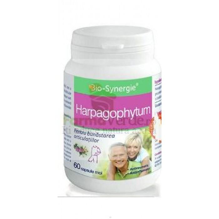 Harpagophytum Gheara Diavolului 60 capsule Bio Synergie