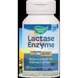 LACTASE ENZYME ACTIVE Digestie Usoara 30 capsule Secom