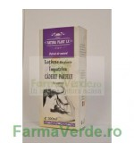 Lotiune Impotriva Caderii Parului 500 ml Natura Plant IF