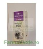 Lotiune de Spanz Tinctura 500 ml Natura Plant IF
