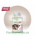 Maitake Forte Ciuperca 500 mg 60 capsule Zenyth Pharmaceuticals