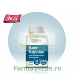 Marine Magnesium 60 capsule Zenyth Pharmaceuticals