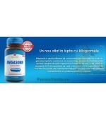 Megasorb Active Diet Arzi mai multe calorii 30 capsule Canadian Pharmaceuticals