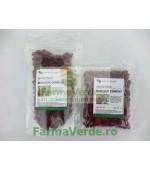 MERISOR CONFIAT Fructe Uscate 150 gr TonikPlant Pharm