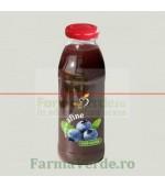 Nectar de afine 300 ml Bun de Tot Dacia Plant
