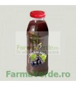 Nectar Coacaze Negre BIO Bun de Tot 300 ml DaciaPlant