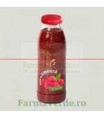 Nectar de zmeura 300 ml Bun de Tot Dacia Plant
