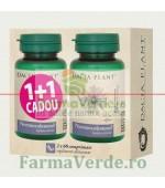 Normocolesterol 60 Comprimate1+1 GRATIS! DaciaPlant PROMO!