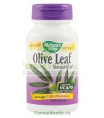 Olive Leaf 20% SE 60 capsule vegetale Nature's Way Secom