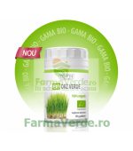 Bio Orz Verde Pulbere 80 gr Zenyth Pharmaceuticals