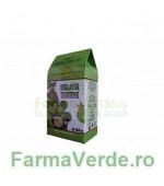 Ceai Reglator Tensiune 100 gr Natura Plant IF