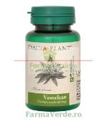 Vasoclean Colesterol 60 comprimate DaciaPlant