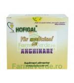 Vin medicinal cu Anghinare 6 monodoze x 50 ml Hofigal
