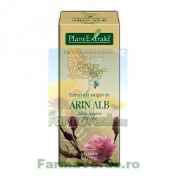 Gemoderivat Extract din muguri de arin alb 50 ml PlantExtrakt