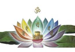 Medicina tradiţională indiană Ayurveda, este cea mai veche stiinţă a vindecării
