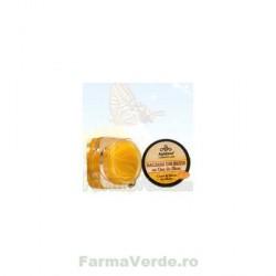 BALSAM DE BUZE cu miere unt de shea si ceara de albine 10 ml Apidava