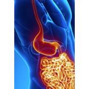 Remedii Boala Crohn