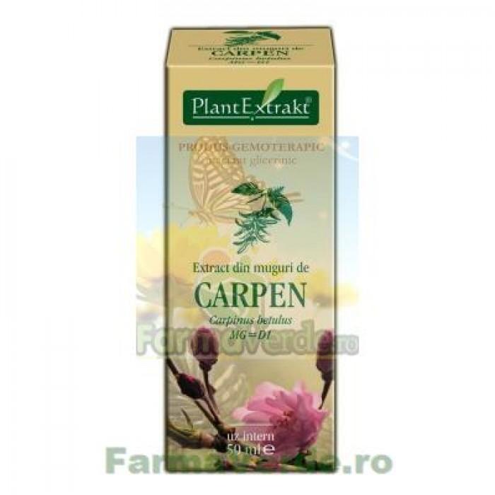Gemoderivat Extract din muguri de carpen 50ml Plantextrakt