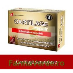 Cartilage Repair Cartilaje Sanatoase 30 Capsule Sprint Pharma