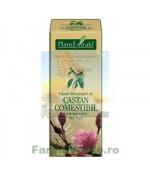 Gemoderivat Extract din muguri de castan comestibil Plantextrakt