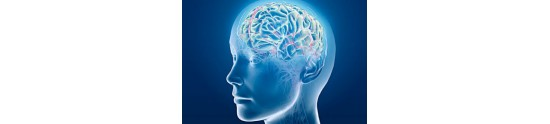 Produse Circulatia Cerebrala