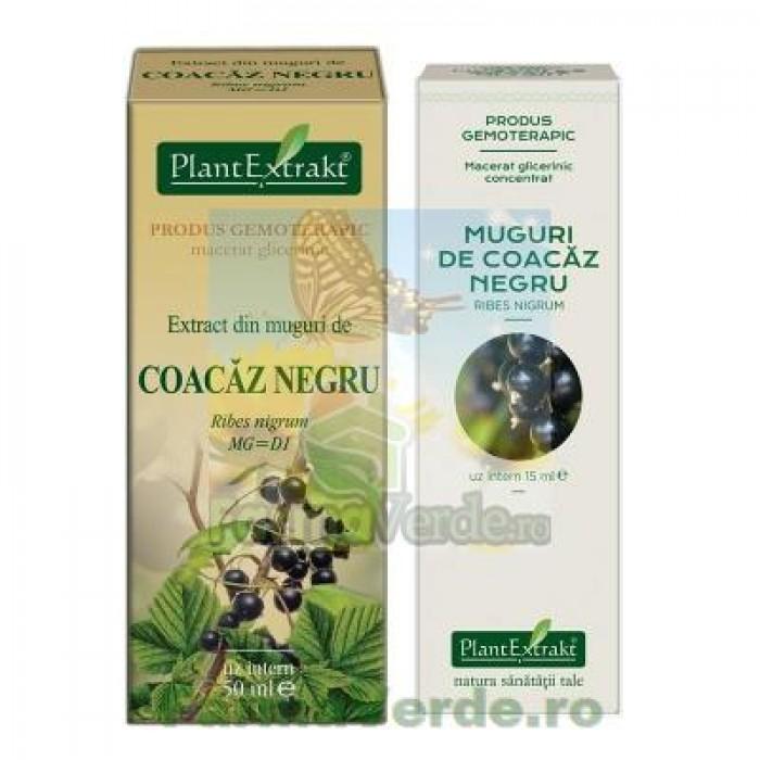 Gemoderivat Extract din muguri de coacaz negru Plantextrakt