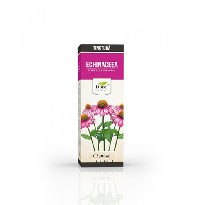 Tinctura de Echinaceea Purpurea 200 ml Dorel Plant
