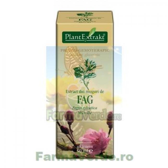 Gemoderivat Extract din muguri de fag 50ml Plantextrakt