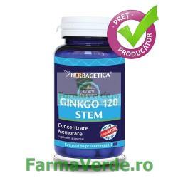 GINKGO120 STEM Sistemul Nervos 30 capsule Herbagetica