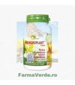 Hemoroplant 100 tablete Indian Herbal Star International