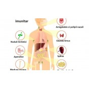 Imunitate,Raceli,Astm