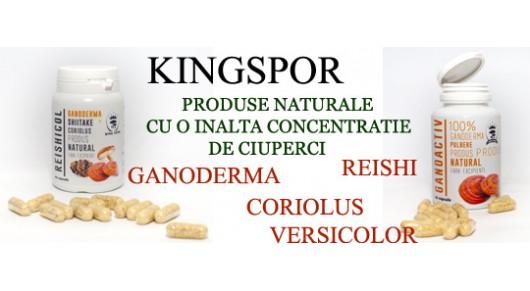 kingspor