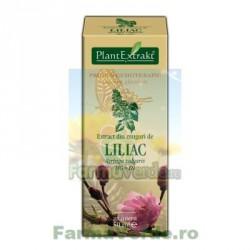 Gemoderivat Extract din muguri de liliac 50ml Plantextrakt