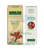 Gemoderivat Extract din mladite de maces 50 ml Plantextrakt