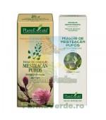 Gemoderivat Extract din muguri de mesteacan pufos Plantextrakt