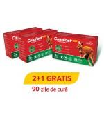 ColaFast Colagen Rapid Cura de 90 zile PROMOTIA 2+1 GRATIS! Good Days Therapy